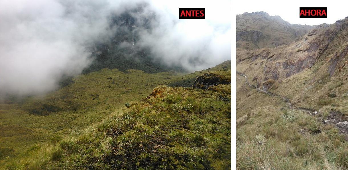 """""""Ecoturistas"""" causan daño ambiental en Páramo Las Tinajas"""