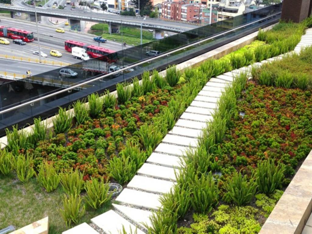 Muros y techos verdes la propuesta de desarrollo for Techos y paredes verdes