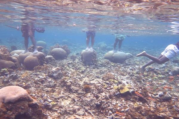 Fotos de turistas parados sobre arrecifes protegidos en San Andrés ...
