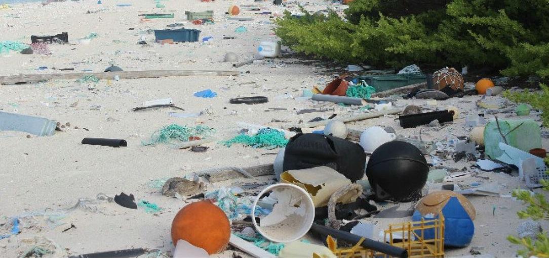 Llamativo caso de la isla deshabitada que tiene la mayor densidad de basura del mundo