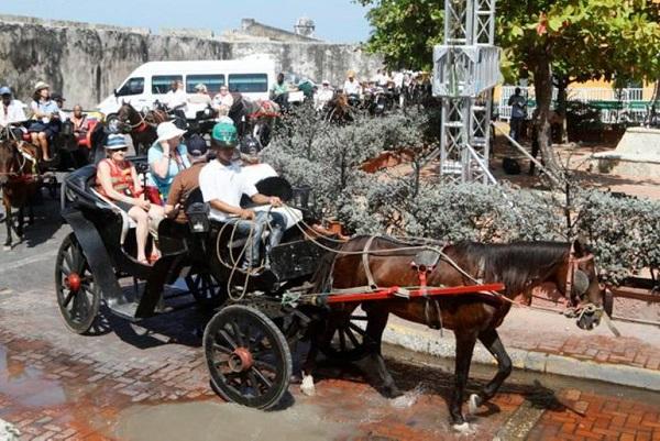 Nuevo llamado de atención a Alcaldía de Cartagena por maltrato a caballos de coches